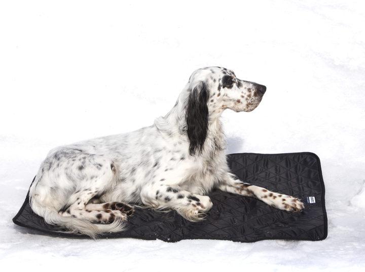 Hundvärmematta