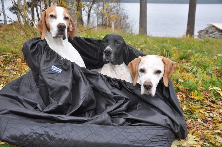 THERMOTIC® Hundvärmesäck