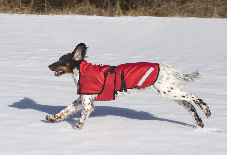 THERMOTIC® Hundvärmetäcke